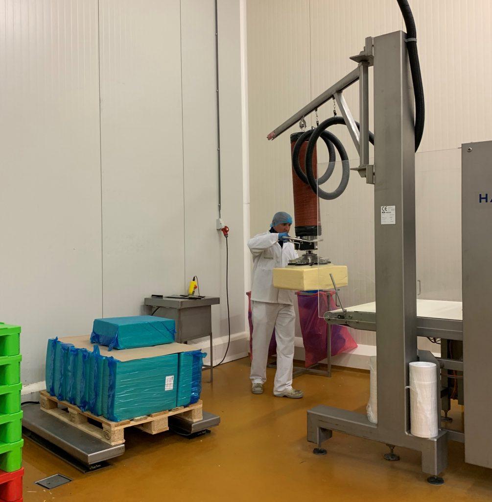Kaasbrik operator in beschermende kledij werkt met inox vacuümhefsysteem om kaasblokken te heffen en op een rolband te plaatsen